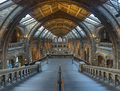 Natural History Museum Main Hall, London, UK - Diliff.jpg