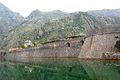 Montenegro-02349-Walls of Kotor-DJFlickr.jpg